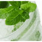 Mojito – Thức Uống Tươi Mát Mùa Hè
