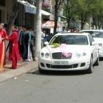 xe cưới đẹp