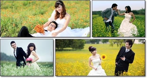 tiệc cưới trọn gói - Hương Sen