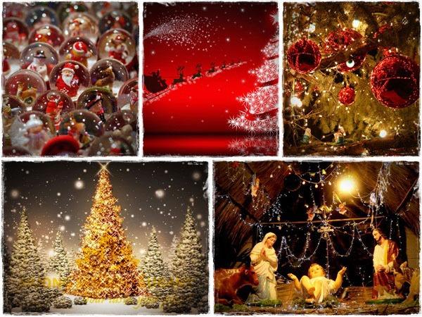 đón Noel tại Hương Sen