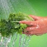 Nguyên tắc phòng tránh ngộ độc thực phẩm trong ngày hè