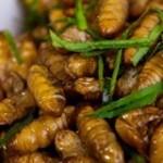 Cách làm nhộng xào lá lốt thơm ngon cho bữa ăn gia đình